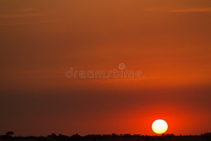 Por do sol de mara do Masai imagem de stock