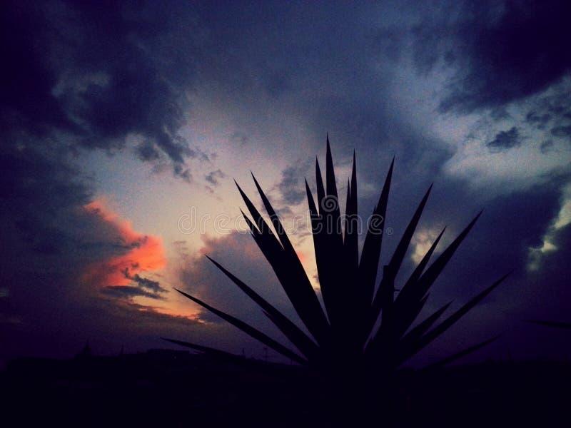 Por do sol de Nápoles foto de stock