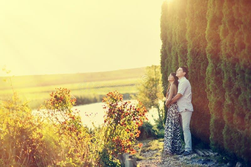Por do sol de observação dos pares novos felizes em um parque do verão fotos de stock royalty free
