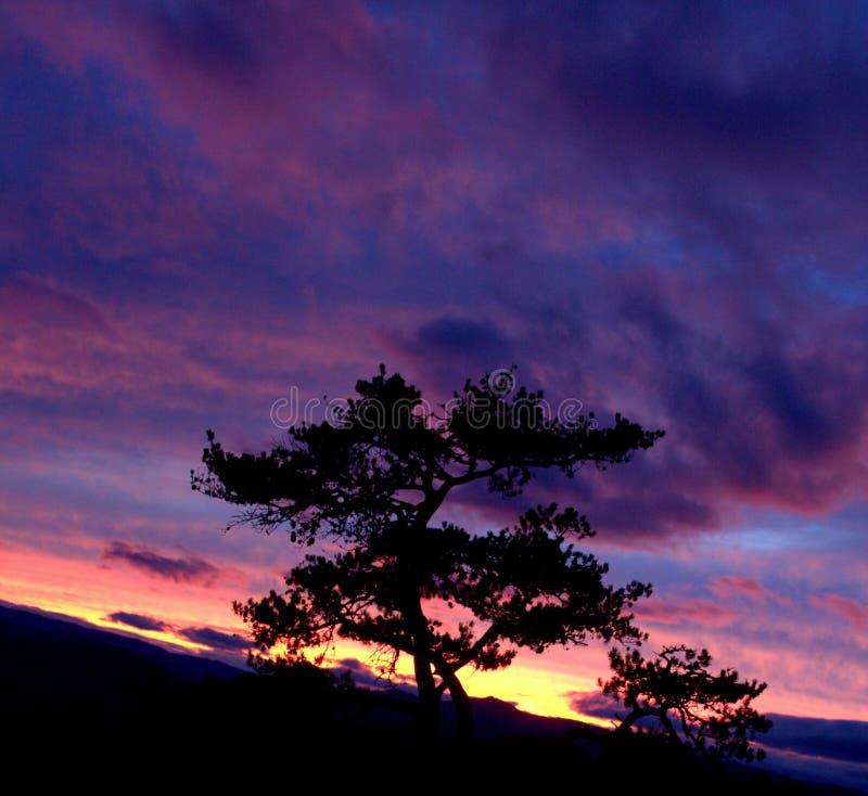 Por do sol de pedra do parque estadual da montanha imagens de stock