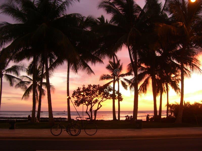Por do sol de Waikiki foto de stock