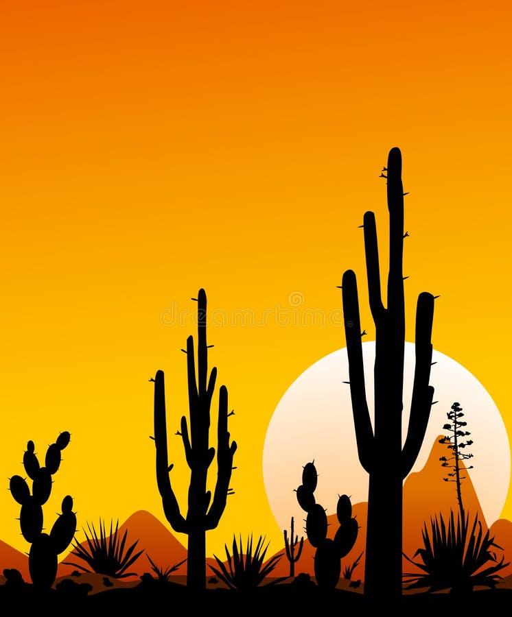 Por do sol 3 do deserto de México O deserto rochoso Paisagem do deserto com cactos ilustração do vetor