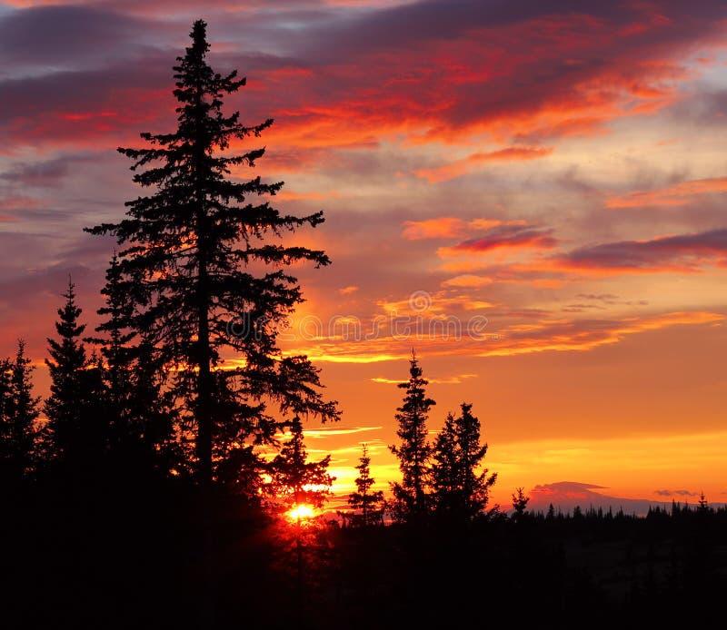 Por do sol do Alasca imagem de stock royalty free