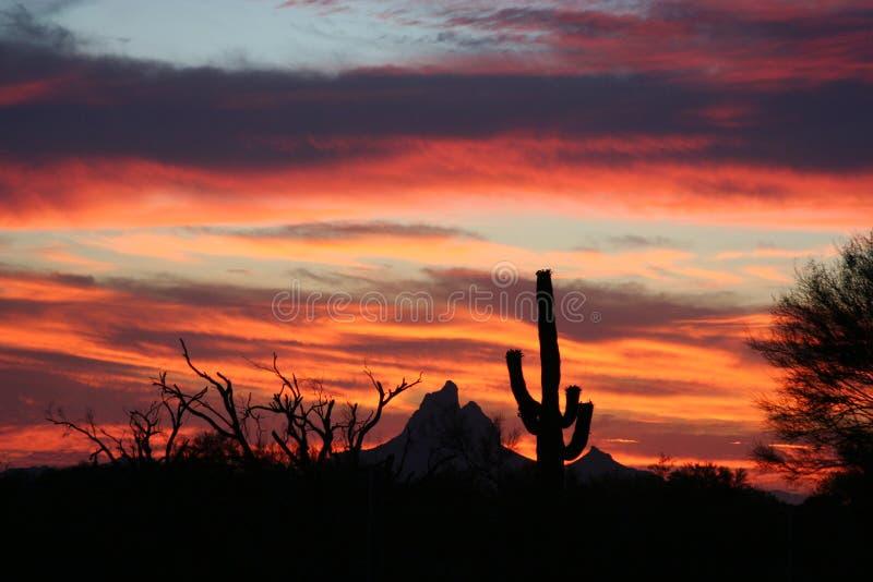 Por do sol do Arizona foto de stock