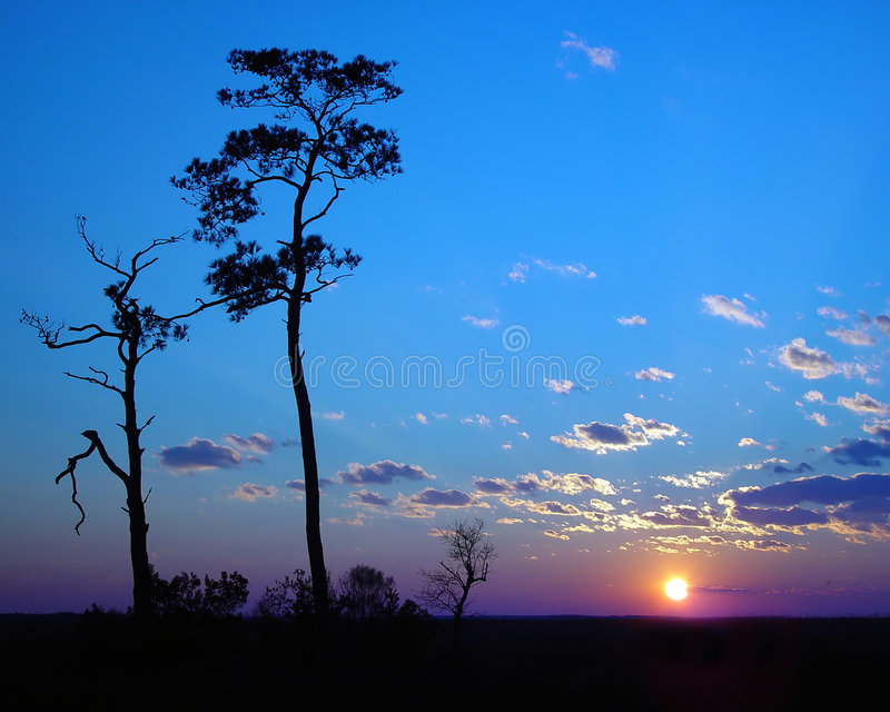 Por do sol do céu azul imagens de stock