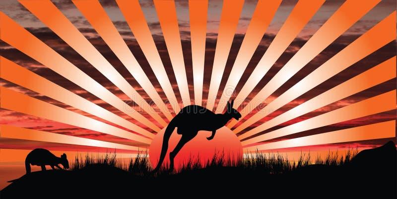 Por do sol do canguru ilustração do vetor
