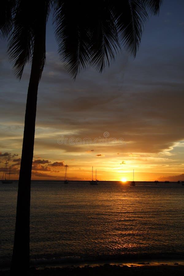 Por do sol do Cararibe fotos de stock royalty free