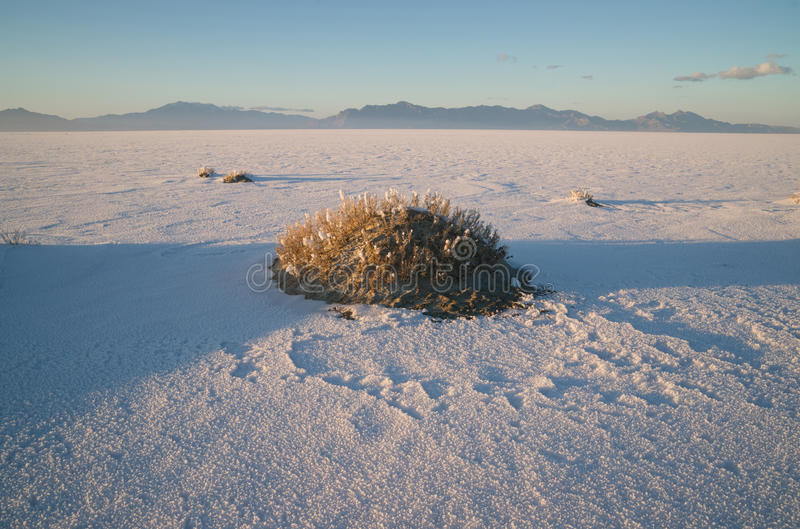 Por do sol do lago Pleistocene de Tooele County Utá dos planos de sal de Bonneville imagem de stock