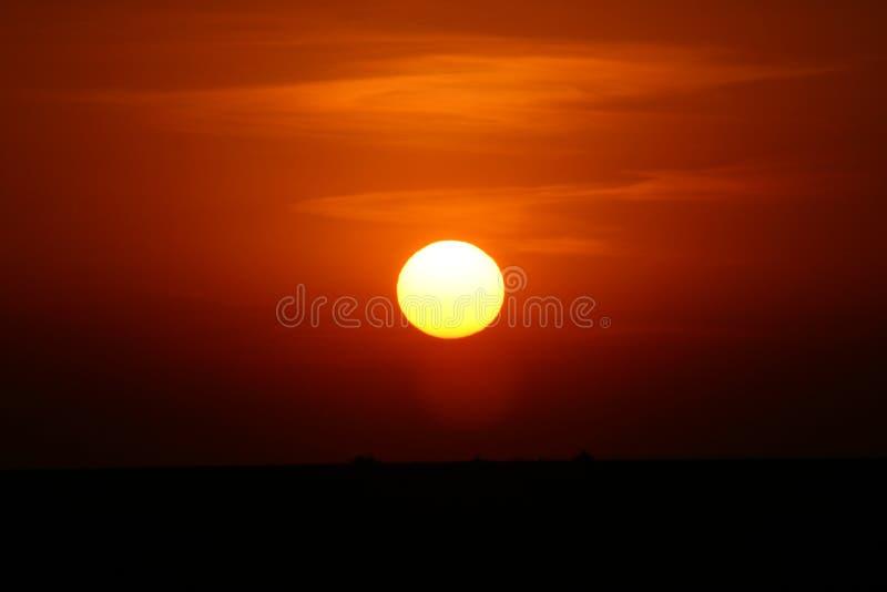 Por do sol do safari de África imagens de stock royalty free