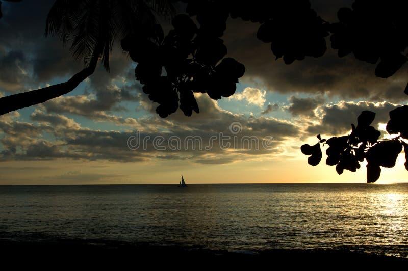 Por do sol do Sepia imagem de stock