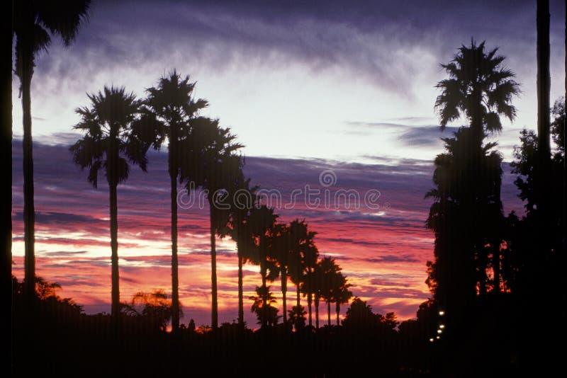 Por do sol do sul clássico de Califórnia foto de stock