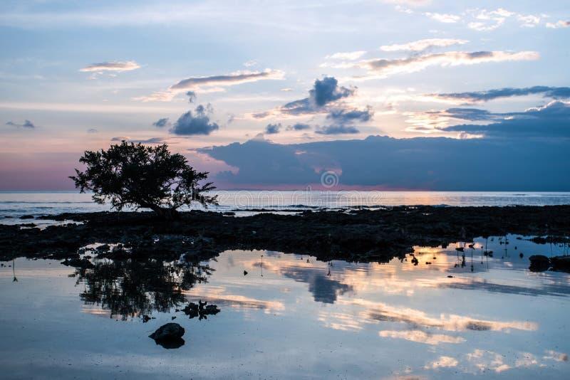 Por do sol dos manguezais, tomado em Neil Island, ilhas de Andaman, Índia imagem de stock royalty free