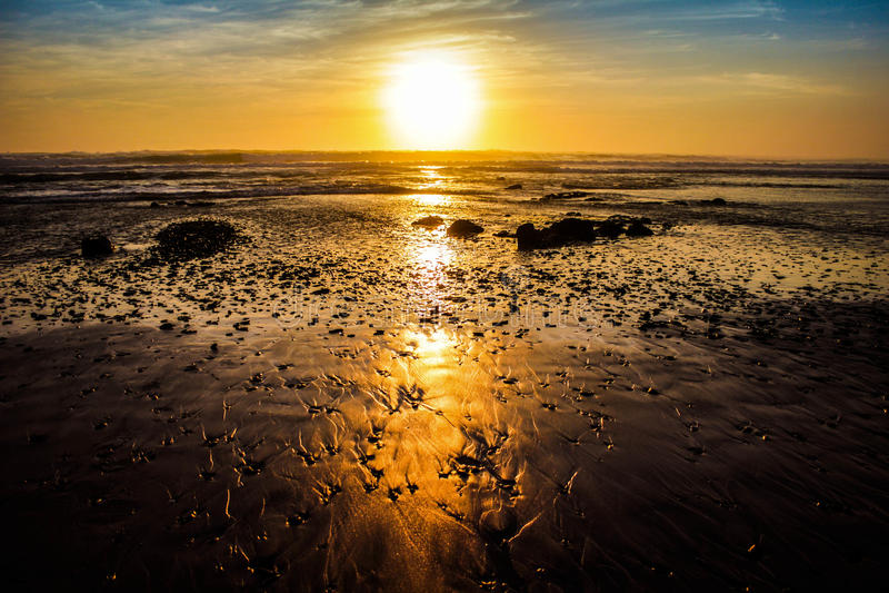 Por do sol dourado foto de stock