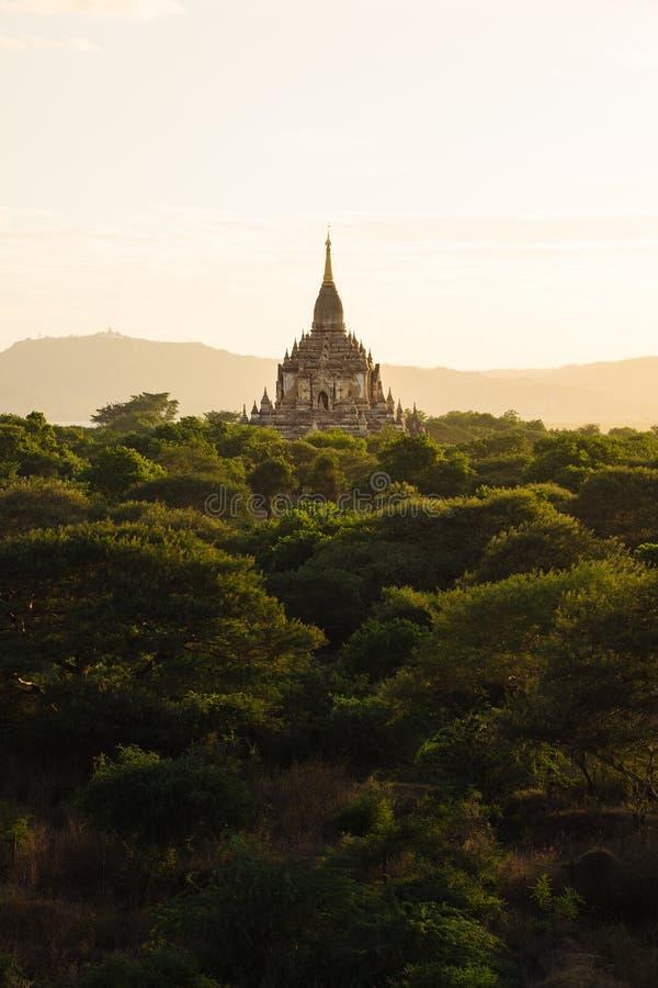 Por do sol dourado bonito da hora com templo antigo, Bagan imagem de stock