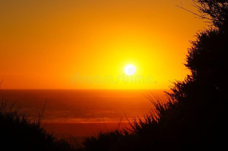 Por do sol dourado da hora na praia/Nova Zelândia de Piha imagem de stock royalty free