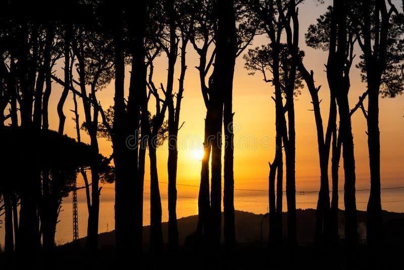Por do sol durante o passeio na natureza fotografia de stock royalty free