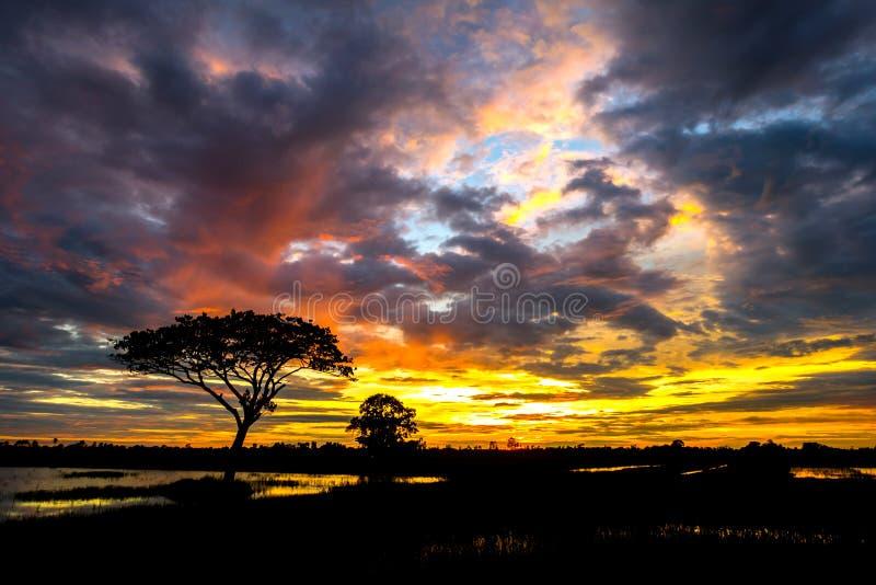 Por do sol e céu da nuvem fotografia de stock royalty free