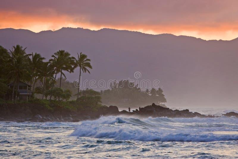Por do sol e ressaca havaianos de Haleiwa imagem de stock royalty free