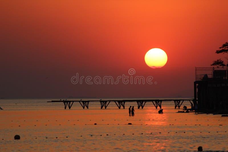Por do sol em Amazónia imagens de stock