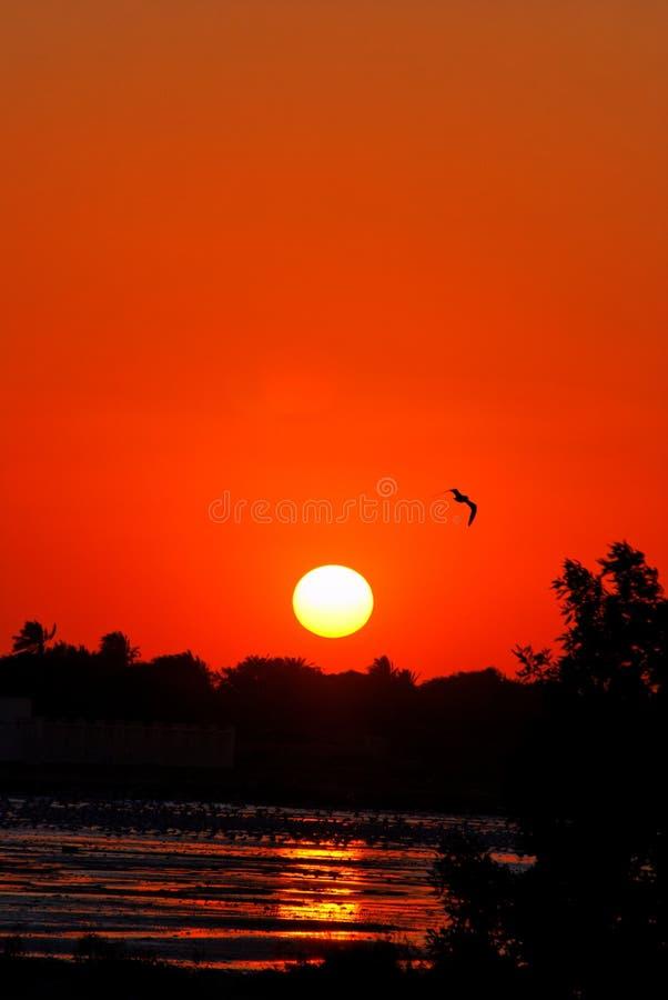 Por do sol em Barém fotografia de stock