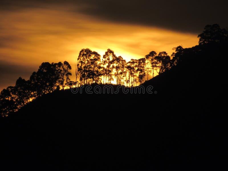 Por do sol em Colômbia fotografia de stock royalty free