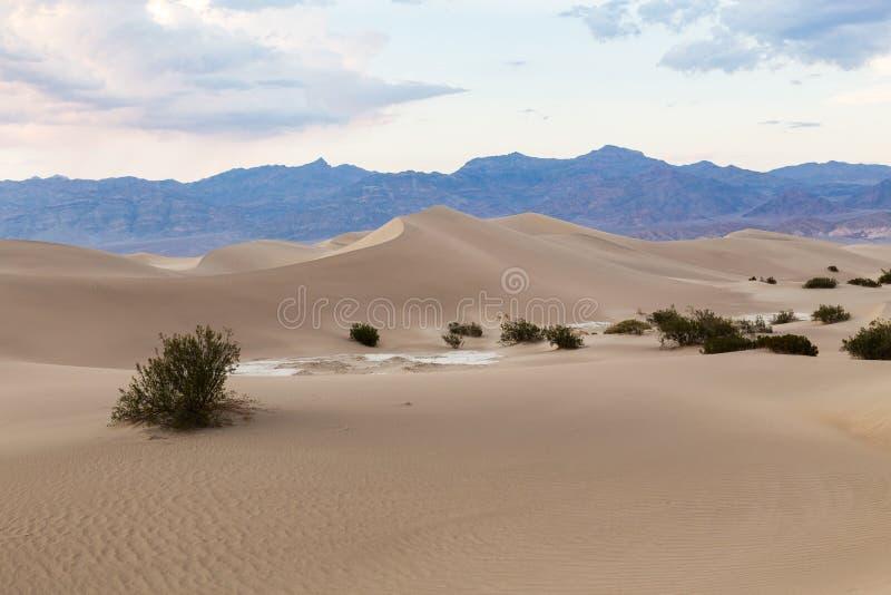 Por do sol em dunas de areia lisas do Mesquite no parque nacional de Vale da Morte, Califórnia, EUA fotografia de stock royalty free