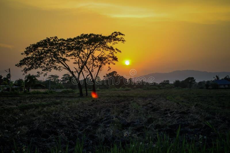 Por do sol em fenômenos naturais fotografia de stock royalty free