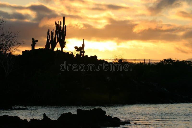 Por do sol em Galápagos imagens de stock