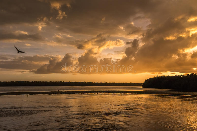 Por do sol em J n Ding Darling National Wildlife Refuge, Sanibe foto de stock royalty free