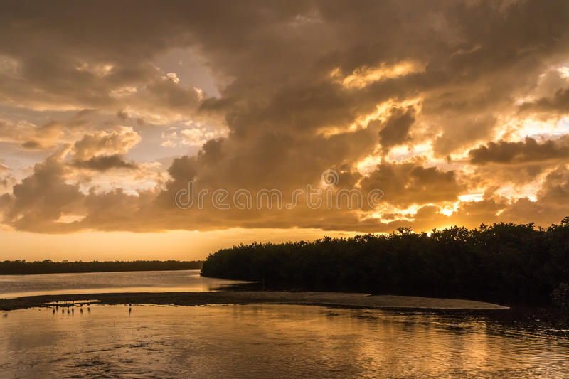 Por do sol em J n Ding Darling National Wildlife Refuge, Sanibe fotos de stock royalty free
