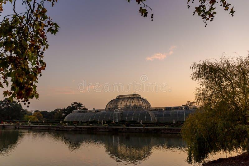 Por do sol em jardins de Kew, Londres foto de stock royalty free
