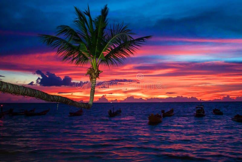 Por do sol em Ko Tao imagem de stock