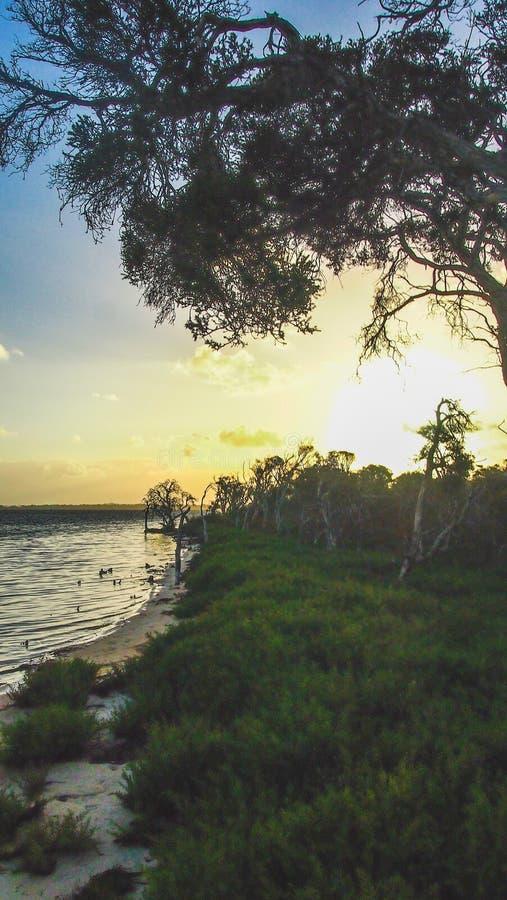 Por do sol em Len Howard Conservation Park perto de Mandurah, Austrália Ocidental imagem de stock royalty free