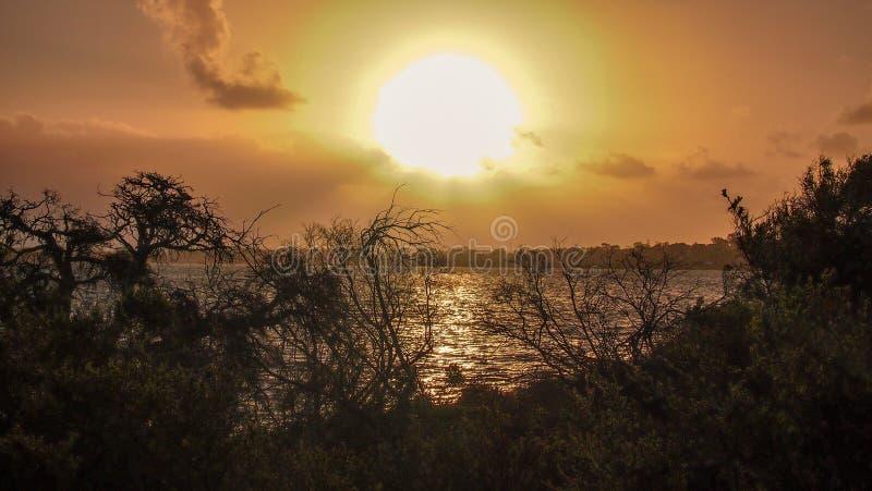 Por do sol em Len Howard Conservation Park perto de Mandurah, Austrália Ocidental fotos de stock