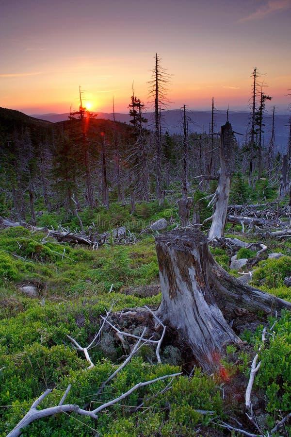Por do sol em montanhas gigantes foto de stock