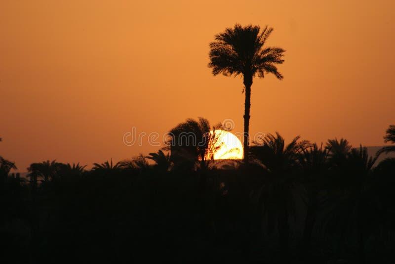 Por do sol em Nile, Egipto imagem de stock