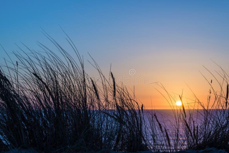 Por do sol em Oceano Atlântico, silhueta do junco em Lacanau França fotografia de stock