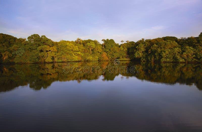 Por do sol em Rio Negro fotografia de stock royalty free