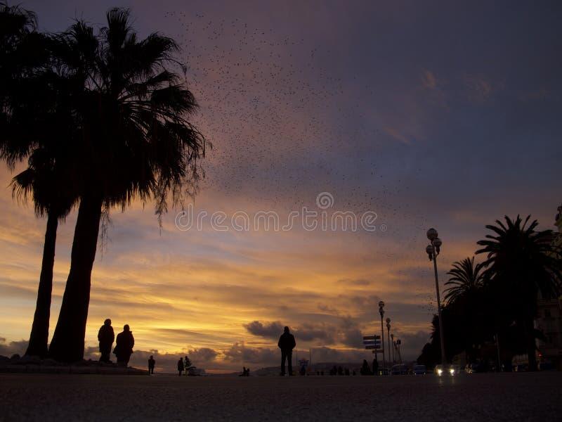 Por do sol em Riviera francês fotos de stock