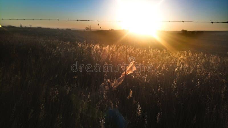 Por do sol em sul - africano Highveld foto de stock royalty free