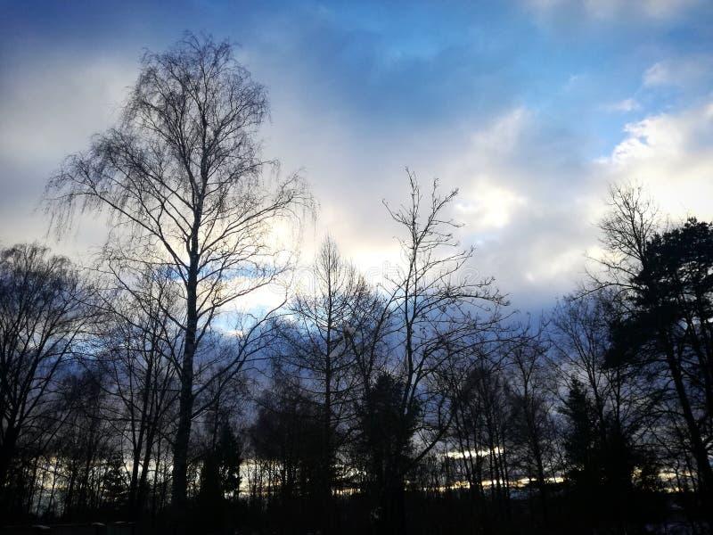 Por do sol encantador fotografia de stock