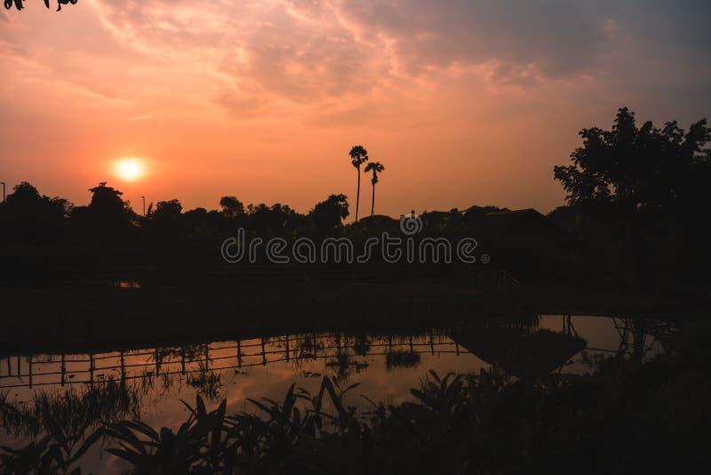 Por do sol fantástico da silhueta no campo Cena pitoresca dramática paisagem rural majestosa Fundo da natureza beleza no foto de stock