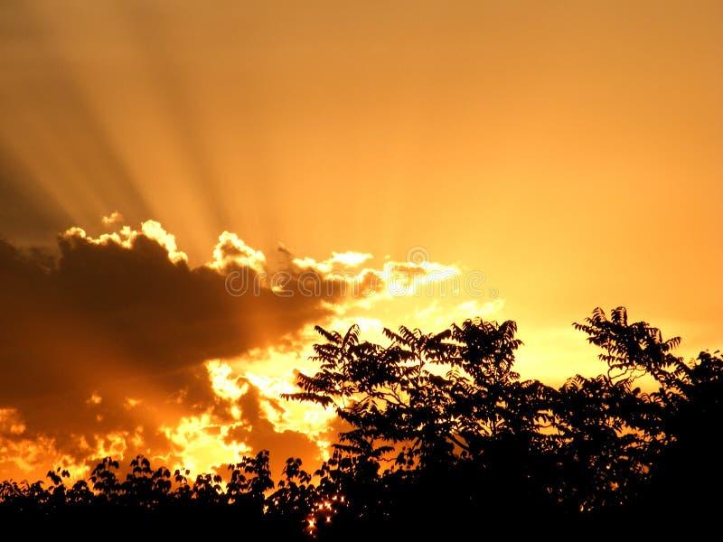 Por do sol glorioso fotografia de stock royalty free