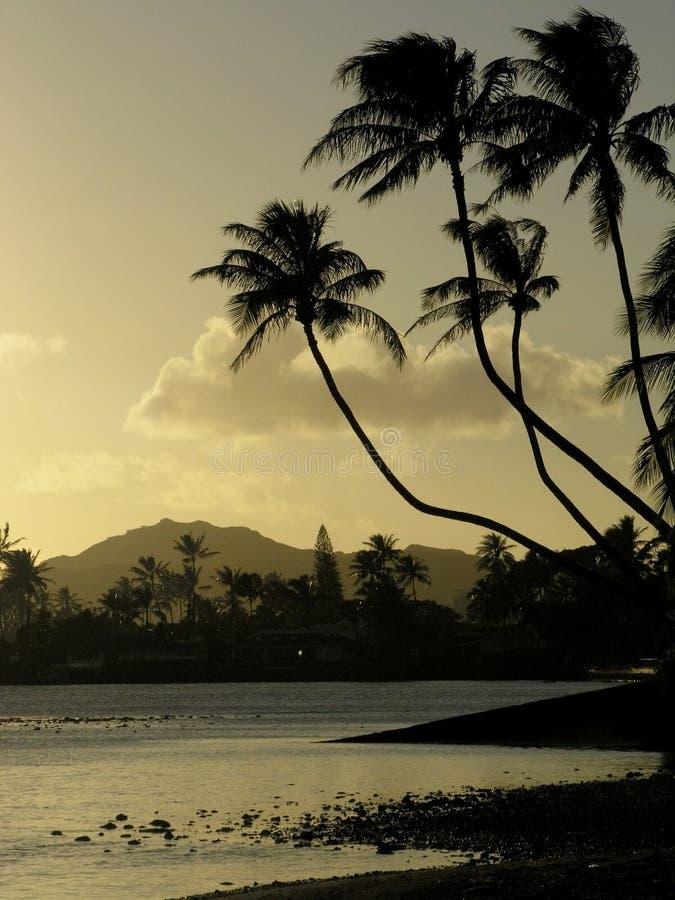 Por do sol havaiano