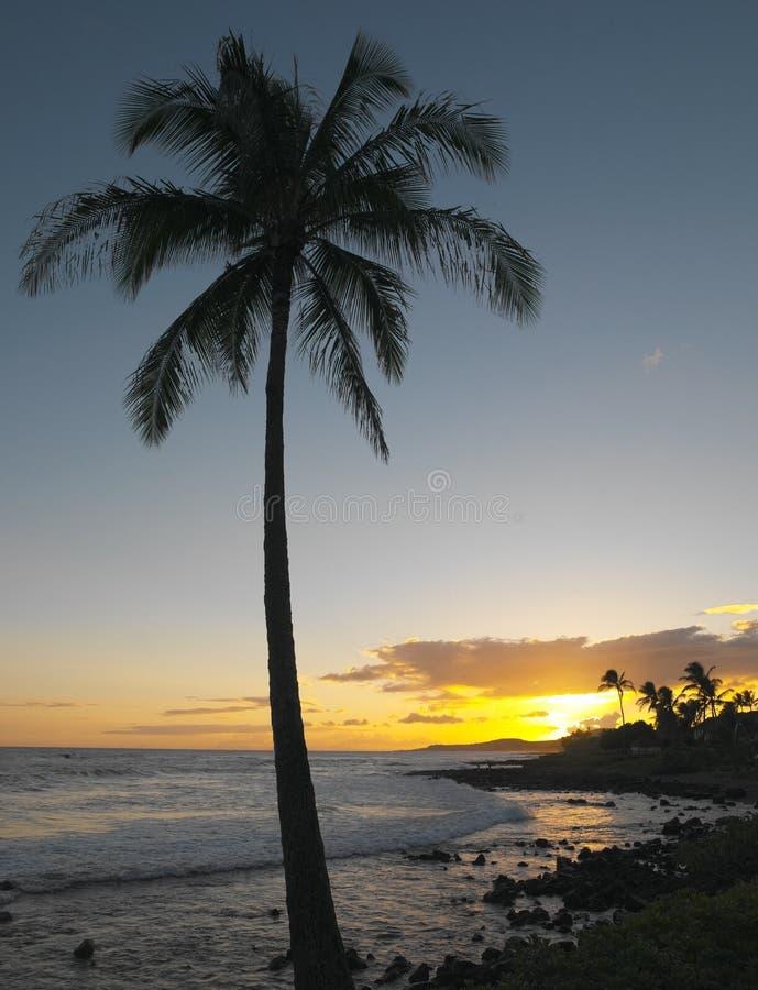 Por do sol havaiano - Kauai   imagens de stock