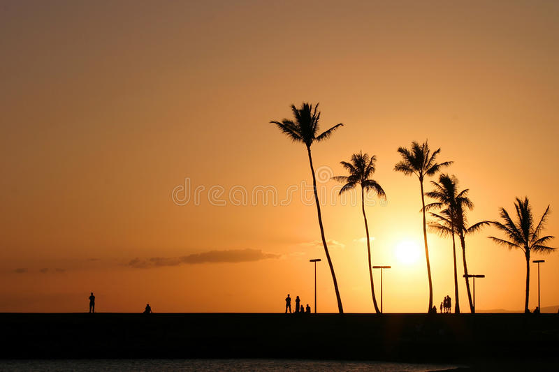 Por do sol havaiano tropical em Waikiki fotos de stock