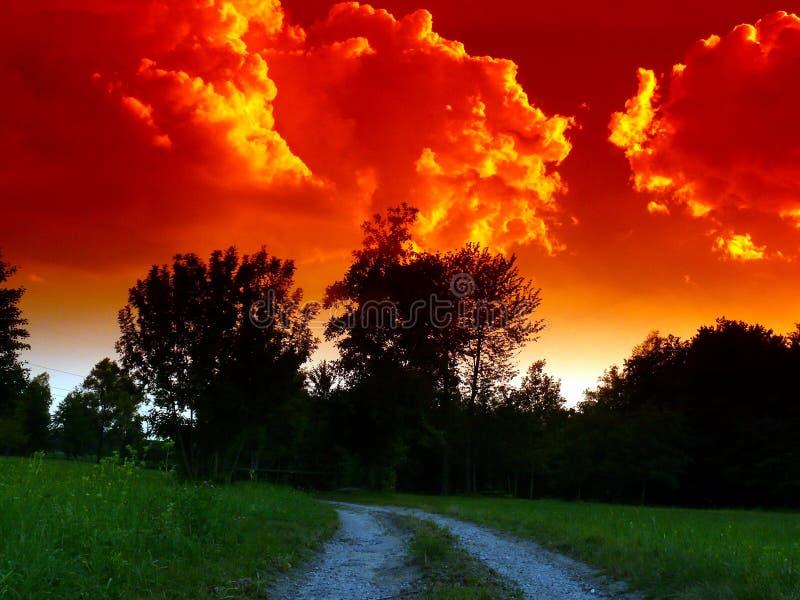 Por do sol impetuoso do verão na planície do lombard imagem de stock royalty free