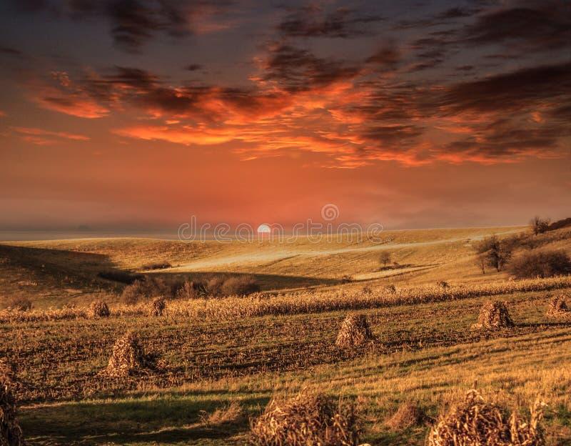 Por do sol impressionante nos campos imagem de stock