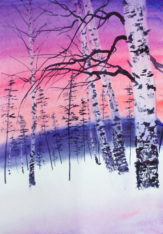 Por do sol do inverno em um bosque do vidoeiro ilustração do vetor