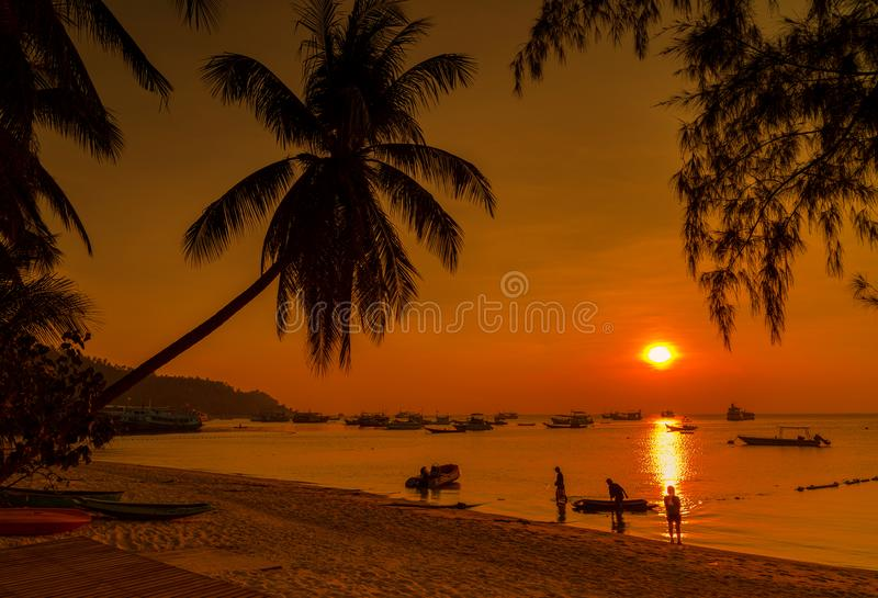 Por do sol, Koh Tao Island foto de stock